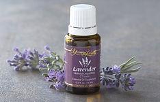 Lavender-Box.jpg