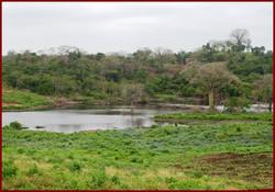 Ecuador 2007 dam gary built