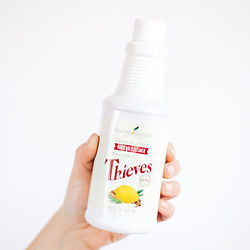 Essential Rewards   Sign Up for Young Living Essential Rewards   Plant-Based Products   Thieves Products   Thieves Household Cleaner