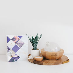 Aria Premium Starter Kit | Premium Starter Kit with Aria Diffuser | Young Living Premium Starter Kits | Young Living Essential Oils Greater Seattle | Ellie Baker Essential Wellness