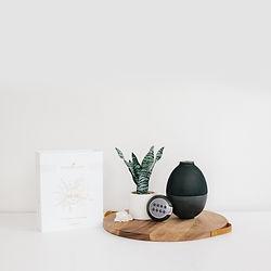 Rainstone Premium Starter Kit | Premium Starter Kit with Rainstone Diffuser | Young Living Premium Starter Kit | Essential Oils Seattle | Essential Oil Diffusers