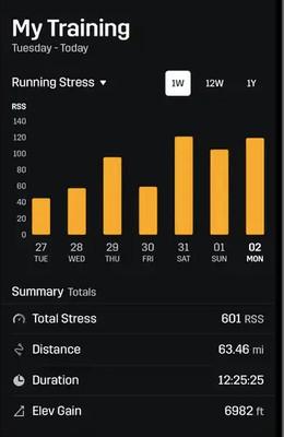 Running Stress Score (RSS)