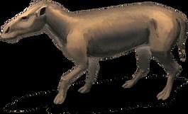 Vorfahre Nashorn.png