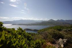 Punta Revellata