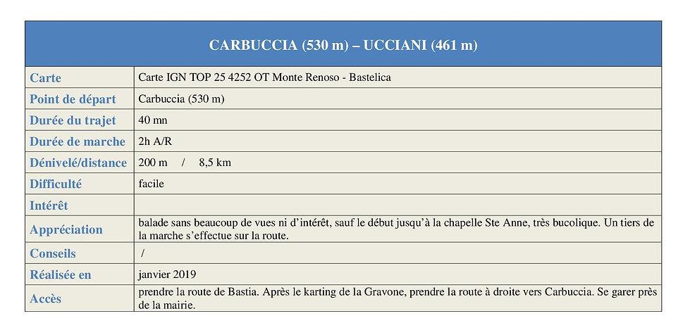 CARBUCCIA - UCCIANI blog1.jpg