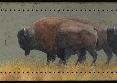 Tough as Steel, American Bison, 18x36, o