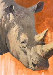Rhino, 16x20, oil on wood panel.jpg