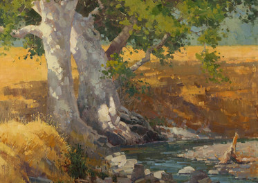 Creekside, Curry Canyon 16x20 oil w.jpg