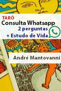 whatsapp_taro.jpg