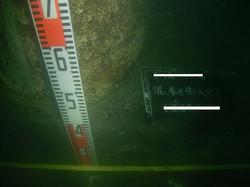 水中写真、潜水調査