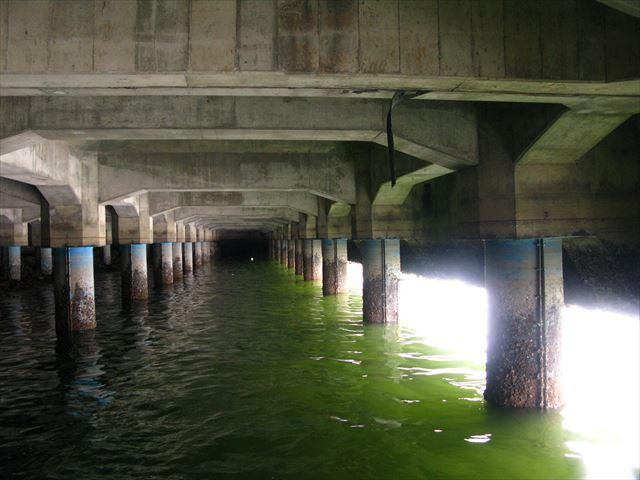桟橋、防食、潜水調査
