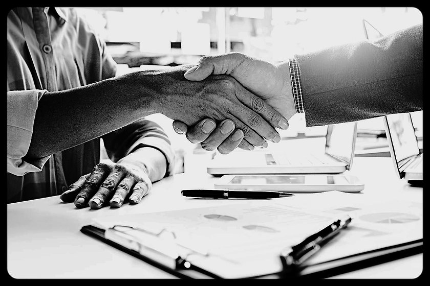 Business handshake and business people.V