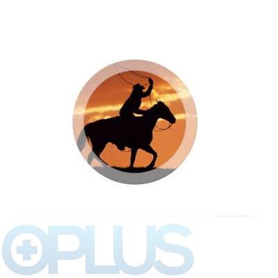 Oplus Amercian blend 10ml