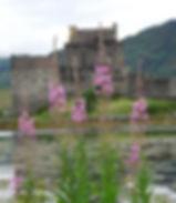 Scotland 2013 Ullapool etc 612.jpg