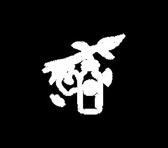 morino - illustration.png
