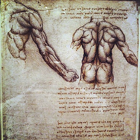 Da Vinci man back 2.jpg