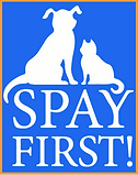 SpayFirst_NewLogo.png