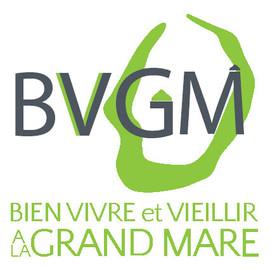 LOGO BVGM