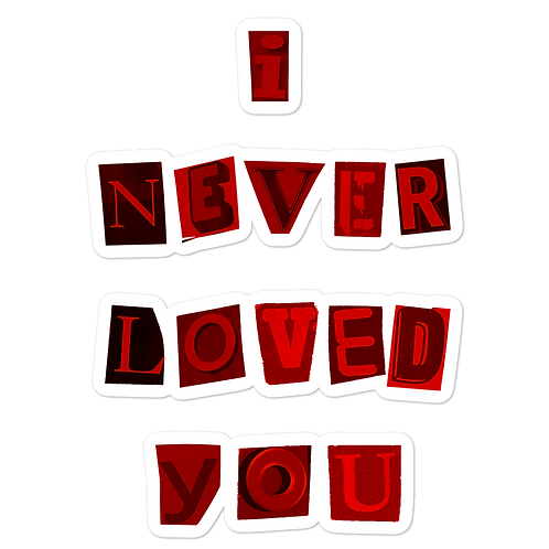 NEVER LOVED YOU STICKER