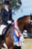 Equestrian Sashes