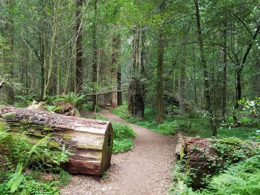 Masterplan Wandern - Ein einheitliches Wander-System soll entstehen