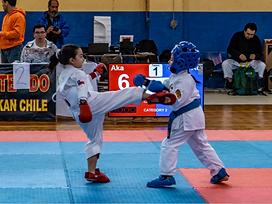 Karate deportivo.png
