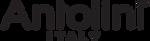 Antolini Logo.png
