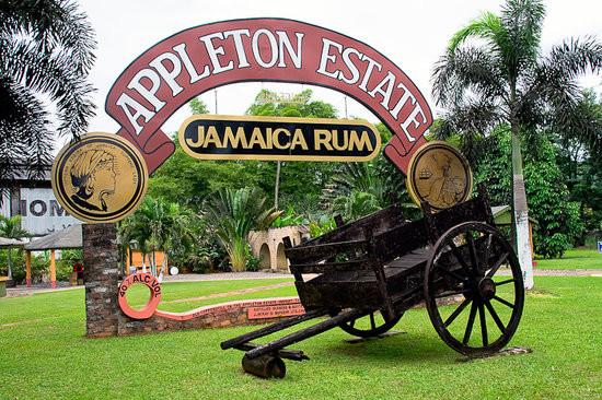 Jamaica Rum tours.jpg