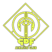 Logo with glow.png