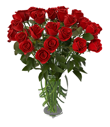 red-rose-bouquet-in-vase-QJDzwxD-600.png
