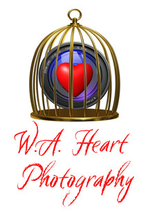 W.A. Heart Photography Logo