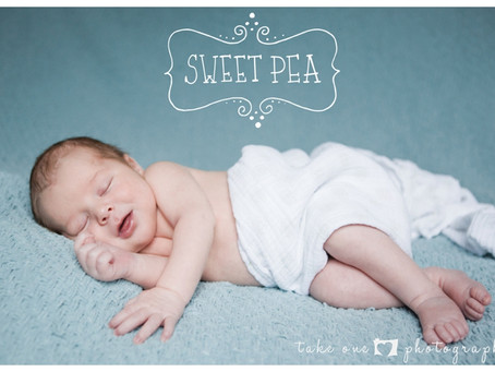Newborn Christmas Photo Shoot