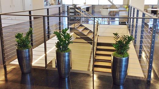 Office hallway ZZ plant trio