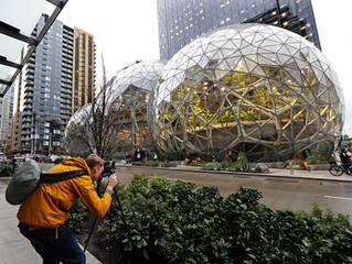 Inside the Amazon Biospheres