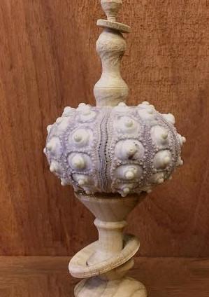 Poplar & Sea Shell Ornament