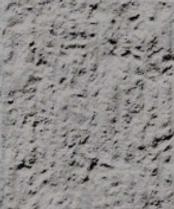 CSP6-Medium Scarification