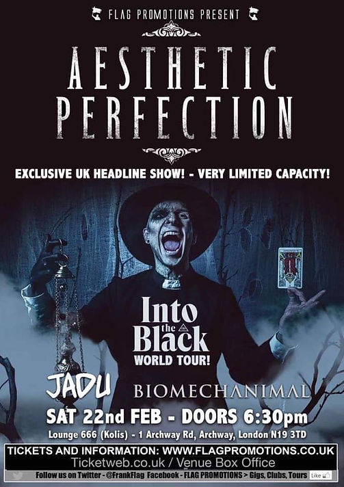 Aesthetic perfection The Alternative Directory