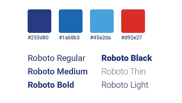 A sample of AAA National web branding including their blue and red color palette and Roboto font options.