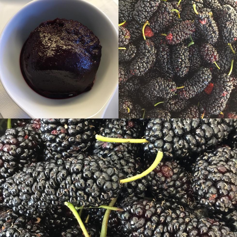 Black_mulberry_sorbe.jpg