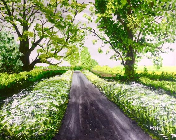 Commonmead Lane, Chipping Sodbury Spring