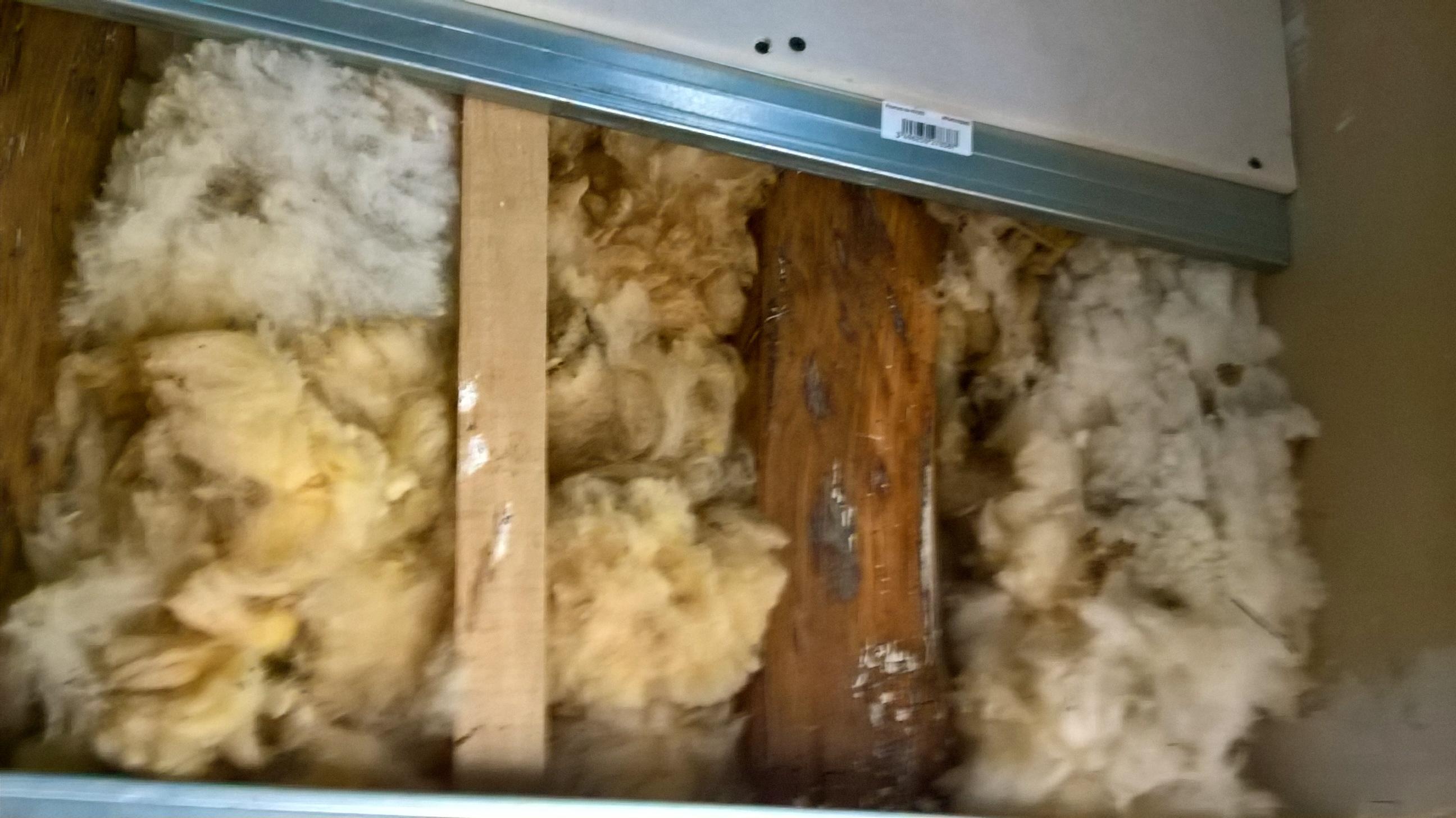 laine de mouton brute