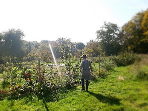 Belle journée automnale au jardin
