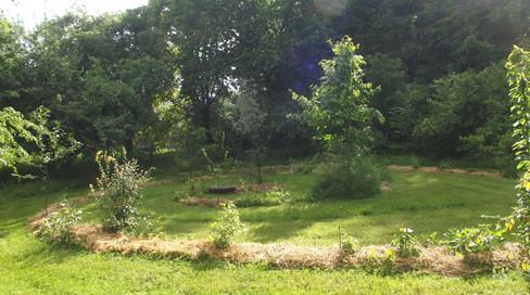 Spirale arbustive