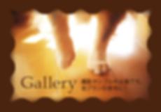 Gallery:ペットたちの撮影サンプル作品集です。各プランの参考に!