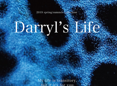 19spring/summer collection                                                Darryl's Life catalog