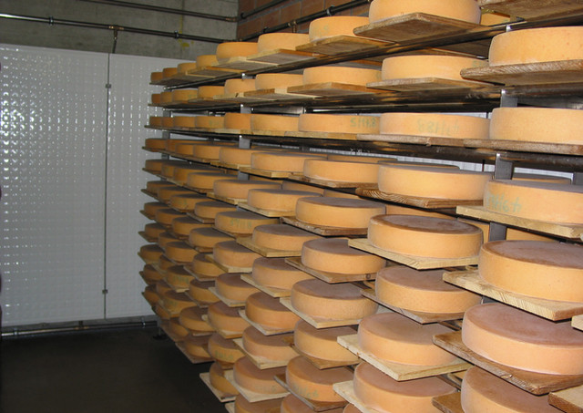 MONDRALECHE CHEESE FACTORY
