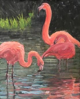 Flamingos by Brenda Hofbauer