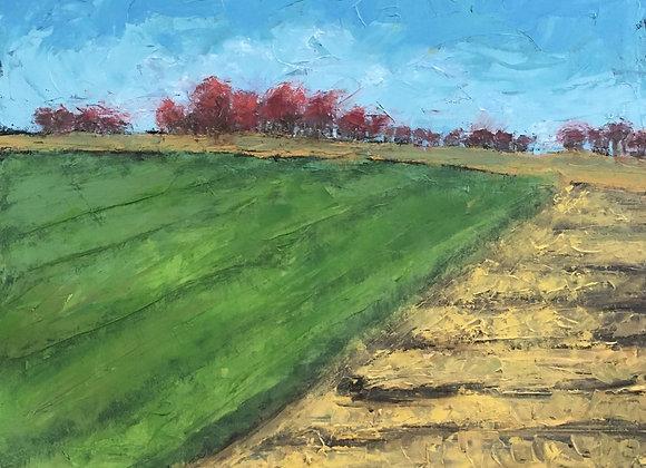 "November Fields 16""x20"""