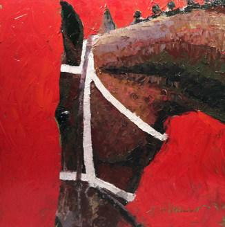 In the Paddock by Brenda Hofbauer