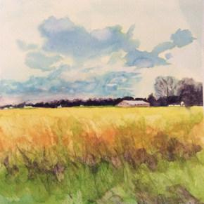 Fall Fields by Brenda Hofbauer